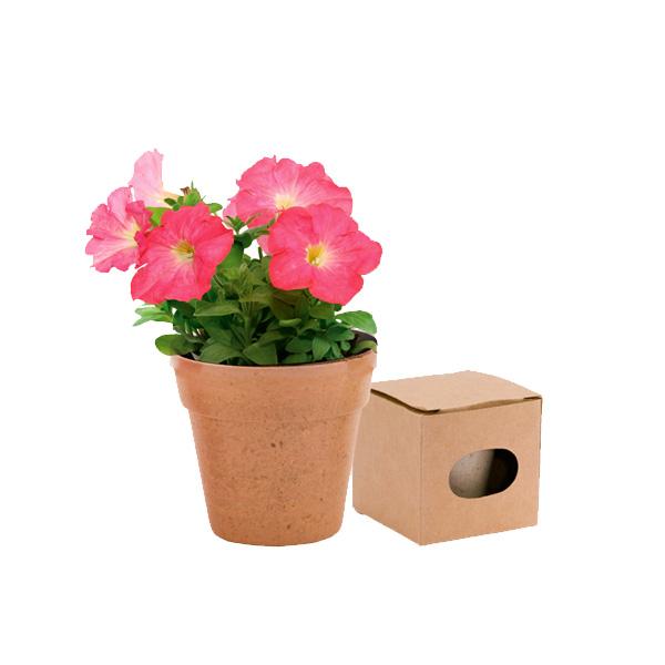 Maceta ADVERT Macetero Biodegradable Flores Colores Surtidos. 5-8 Semillas de Petunia Incluidas VER/NATU/ROJ