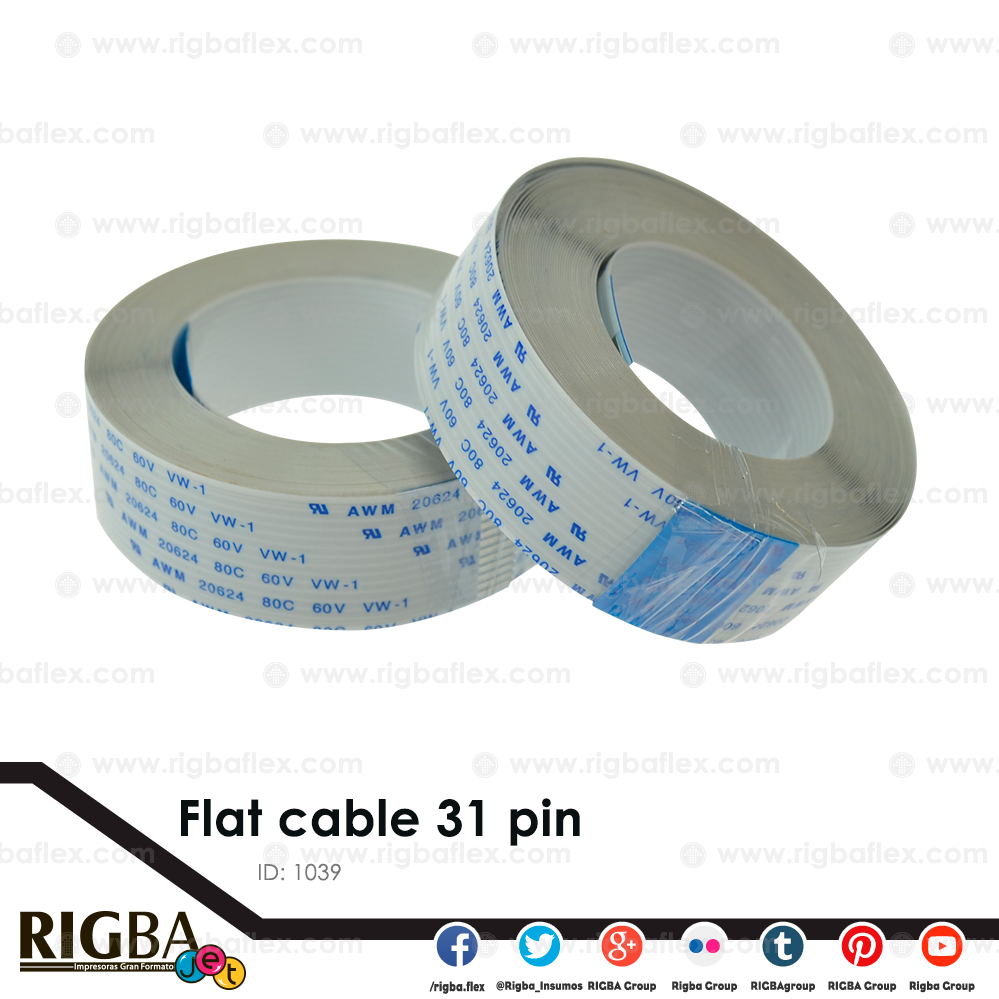 Flat cable 31 pin
